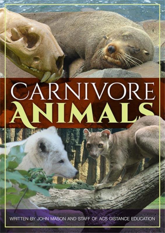 Carnivore Animals PDF eBook