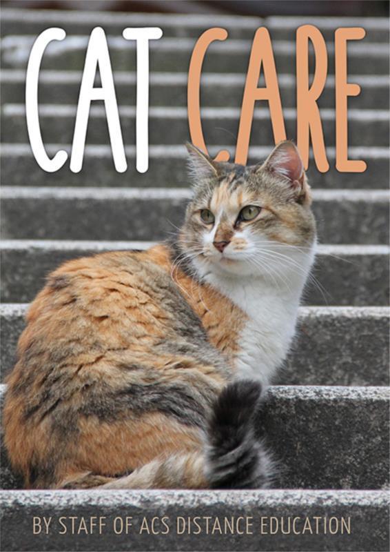 Cat Care - PDF ebook