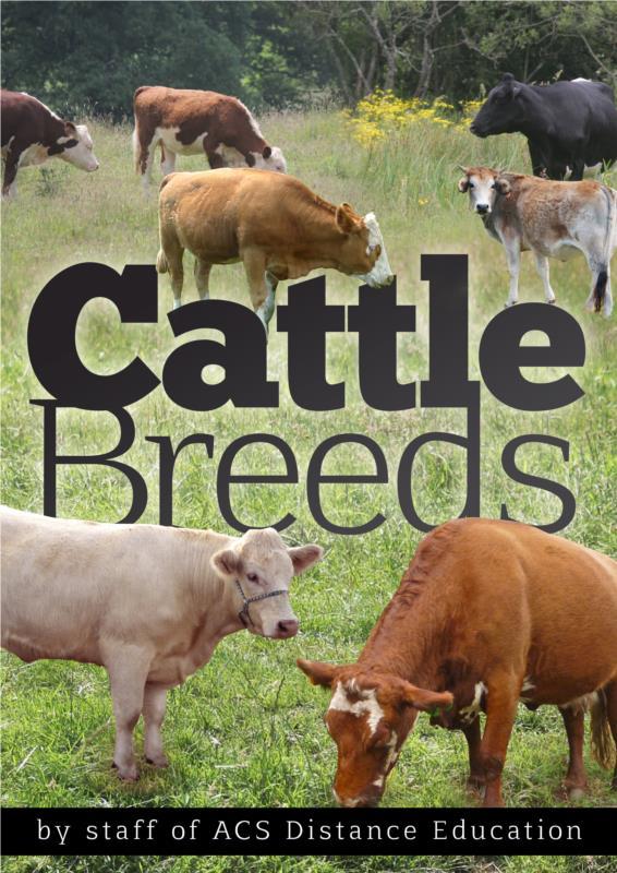 Cattle Breeds- PDF Ebook