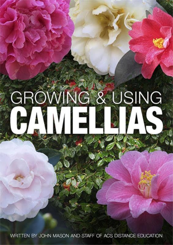Growing and Using Camellias