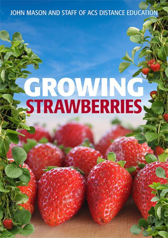 Growing Strawberries - PDF ebook